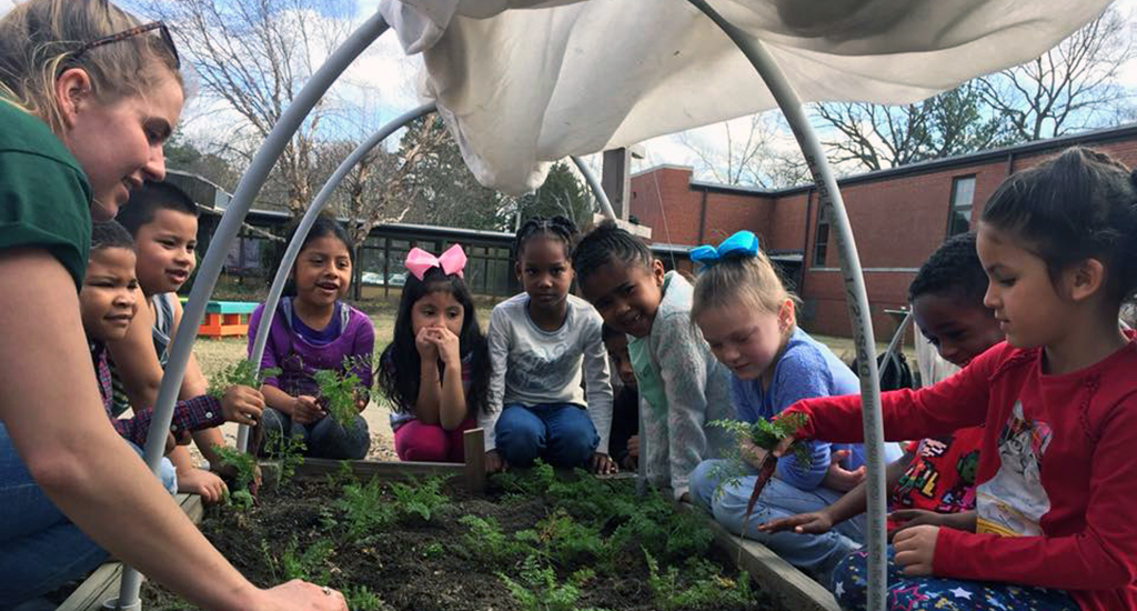 students and teacher digging in the small garden