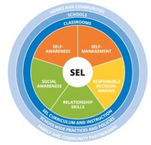 infographic showing the learning system for SEL
